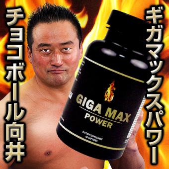 ギガマックスパワー-1