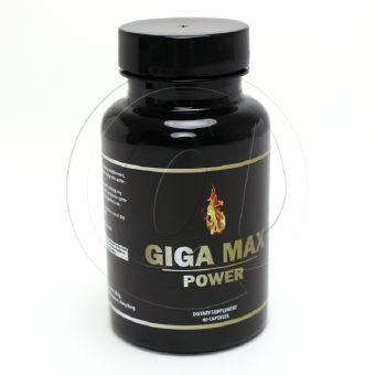 ギガマックスパワー-2