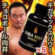 ギガマックスパワー【5箱セット】