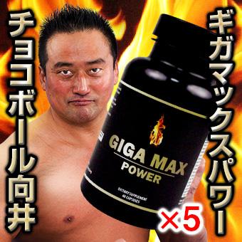ギガマックスパワー【5箱セット】-1